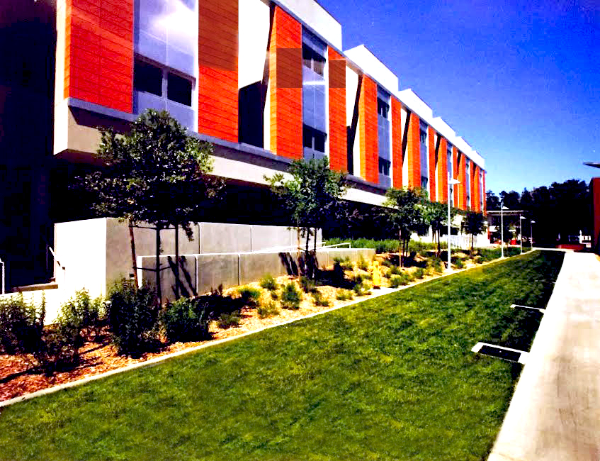 palomar-college